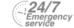 24/7 Emergency Service Pest Control in Worcester Park, Cuddington, Stoneleigh, KT4. Call Now! 020 8166 9746